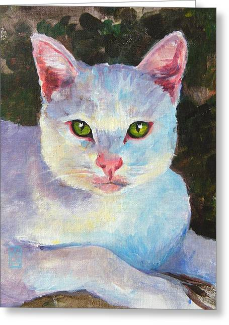 Debra Jones Greeting Cards - White Kitty Greeting Card by Debra Jones