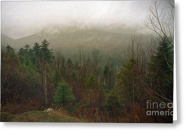 Covered Bridge Greeting Cards - White Mountain Mist Greeting Card by Skip Willits