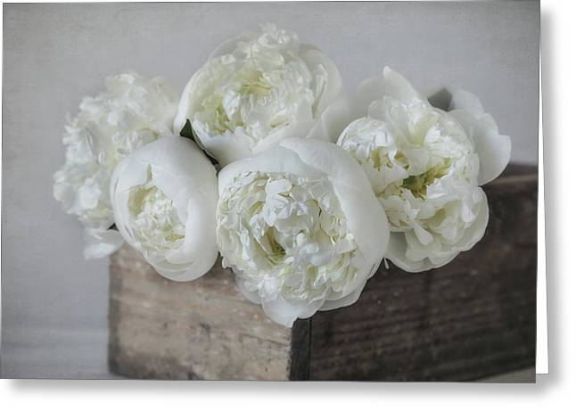 White Peonies Greeting Card by Kim Hojnacki