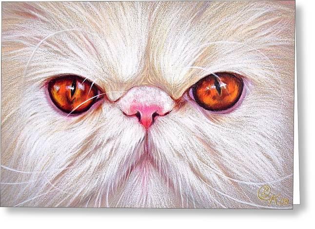 Cat Drawings Greeting Cards - White Persian cat Greeting Card by Elena Kolotusha