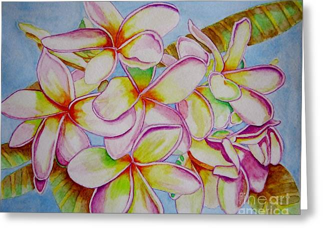 Coloured Greeting Cards - White Plumeria Greeting Card by Sharon Patterson