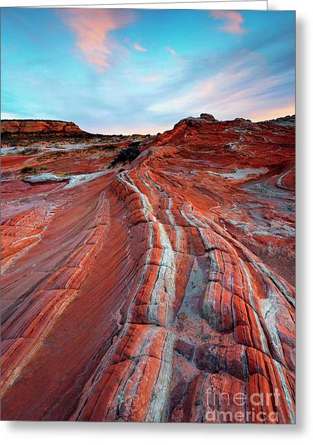 White Pocket Sunset Greeting Card by Mike Dawson