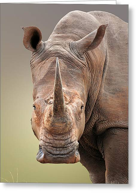 White Rhinoceros Portrait Greeting Card by Johan Swanepoel