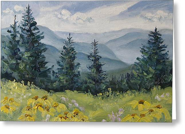 Steamboat Springs Western Greeting Cards - White River Valley Colorado Greeting Card by Zanobia Shalks