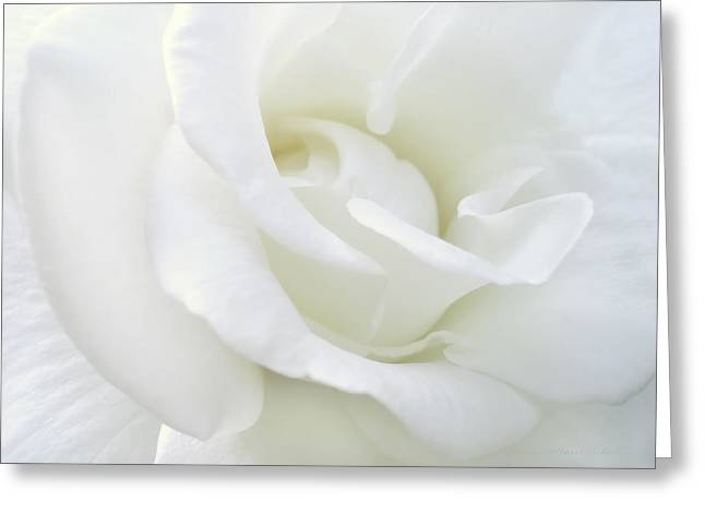 White Rose Angel Wings Greeting Card by Jennie Marie Schell