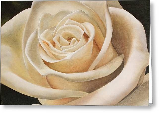 Close Up Paintings Greeting Cards - White Rose Greeting Card by Rob De Vries