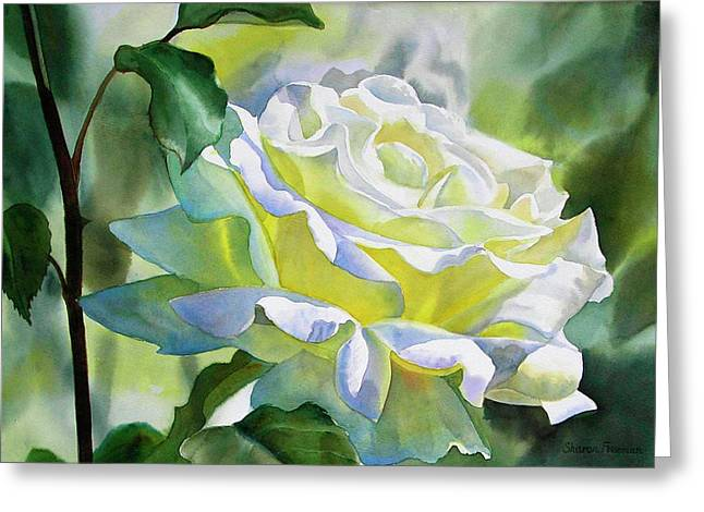 White Paintings Greeting Cards - White Rose with Yellow Glow Greeting Card by Sharon Freeman