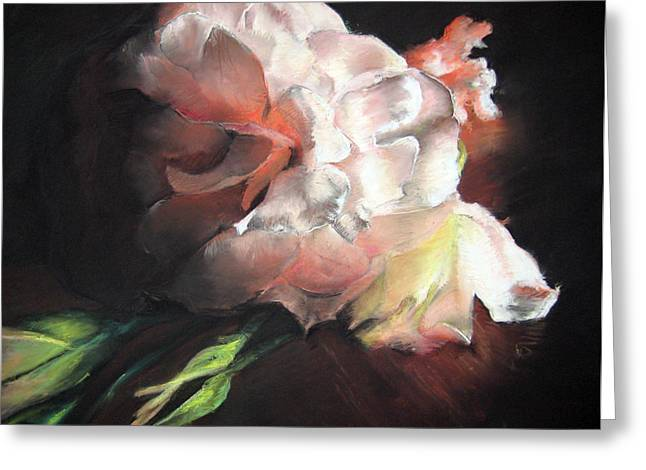 Competition Pastels Greeting Cards - White Roses Greeting Card by Beka Burns