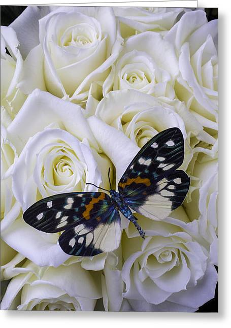 White Photographs Greeting Cards - White Roses With Colorful Butterfly Greeting Card by Garry Gay