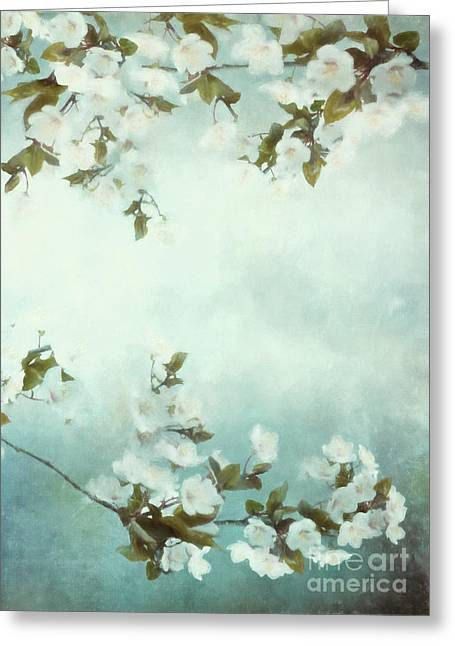 Muted Greeting Cards - White Sakura Blossoms Greeting Card by Shanina Conway