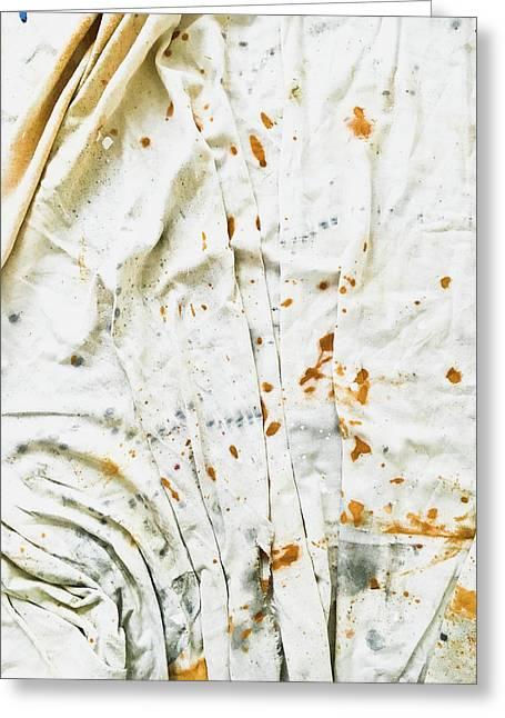 White Sheet Greeting Card by Tom Gowanlock
