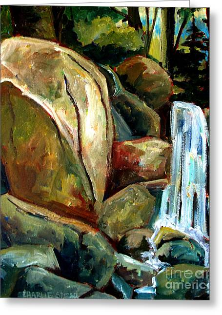Reserve Paintings Greeting Cards - White Tail Falls Greeting Card by Charlie Spear
