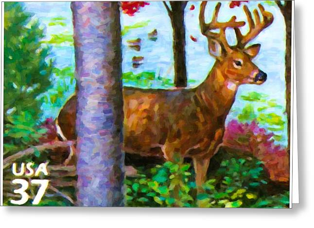 Philatelist Greeting Cards - White-tailed deer Greeting Card by Lanjee Chee