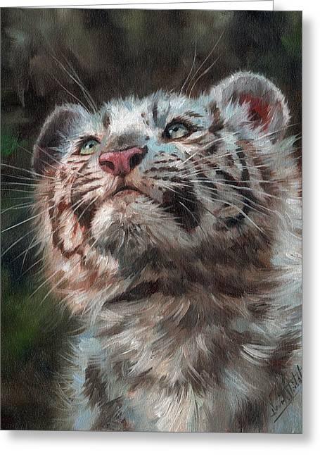White Tiger Greeting Cards - White Tiger Cub Greeting Card by David Stribbling
