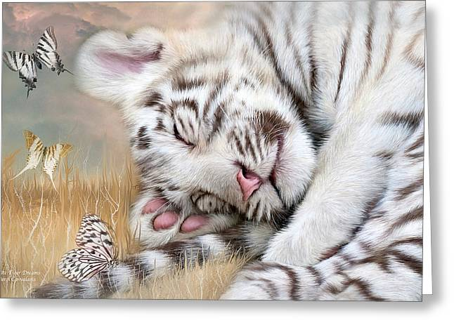 Young Tiger Greeting Cards - White Tiger Dreams Greeting Card by Carol Cavalaris