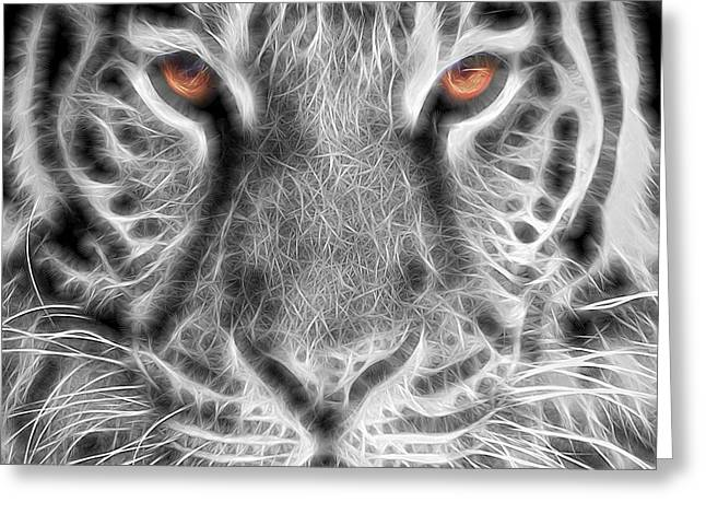 White Tiger Greeting Card by Tom Mc Nemar