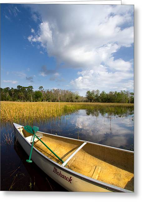 Canoeing Photographs Greeting Cards - White Tower Greeting Card by Debra and Dave Vanderlaan