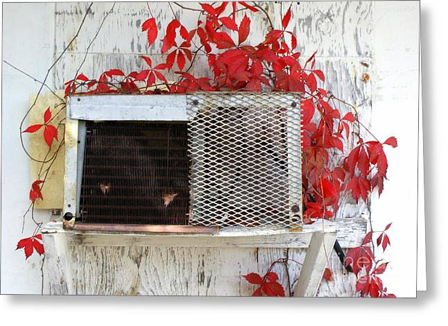 Air Conditioner Greeting Cards - White Wash Greeting Card by Jennifer  Diaz