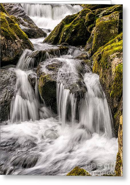 White Water Rapids Greeting Card by Adrian Evans