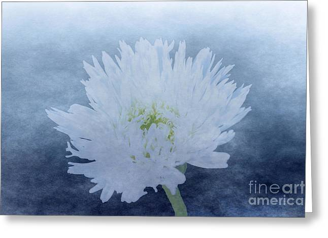 Les Fleurs Greeting Cards - White Wispy Flower Greeting Card by Linda Troski