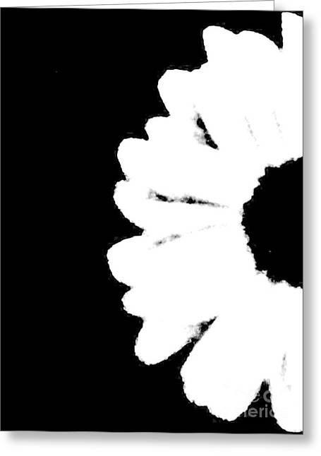White With Black Greeting Card by Marsha Heiken