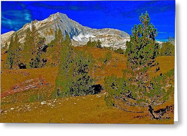 Whitebark Pines Greeting Cards - Whitebark Pine and North Peak Wider Greeting Card by Scott L Holtslander