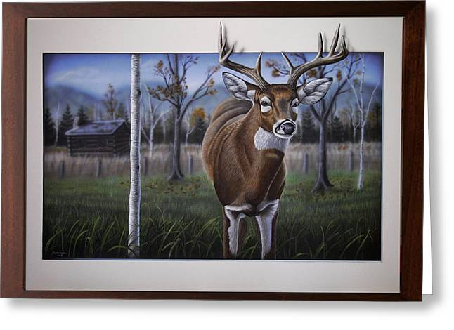 Fall Grass Greeting Cards - Whitetail Buck Greeting Card by Dustin Dattilio