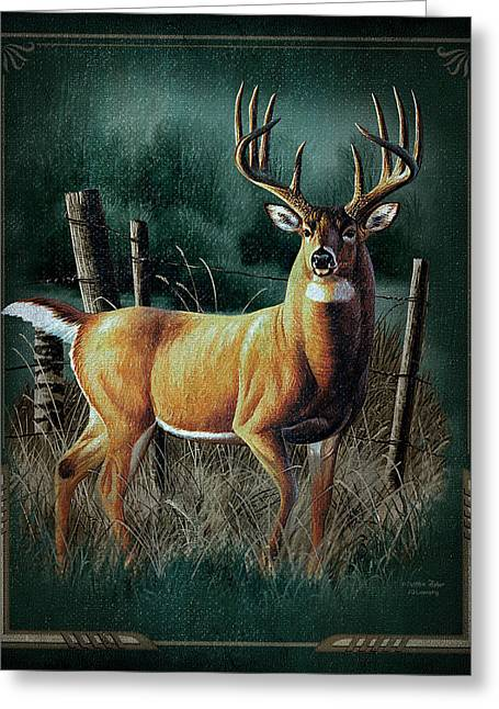 Whitetail Deer Greeting Card by JQ Licensing