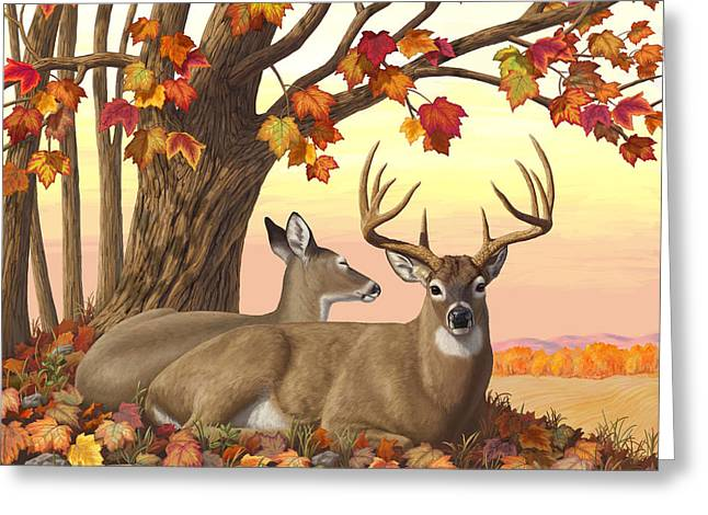 Whitetail Deer - Hilltop Retreat Horizontal Greeting Card by Crista Forest