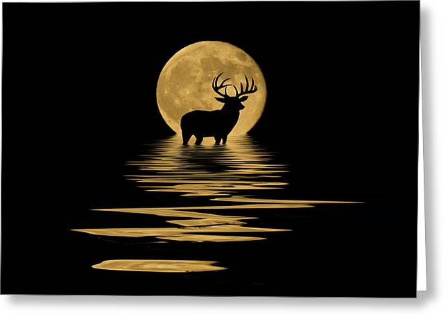 Full Moon Mixed Media Greeting Cards - Whitetail Deer in the Moonlight Greeting Card by Shane Bechler