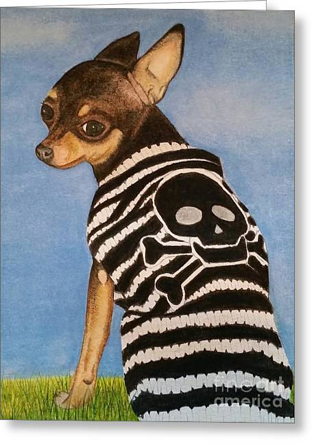 Dog Sweaters Greeting Cards - Who me? Greeting Card by Jennifer Willhite