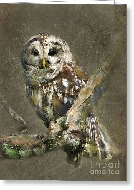 Barred Owl Greeting Cards - Whoooo Greeting Card by Betty LaRue