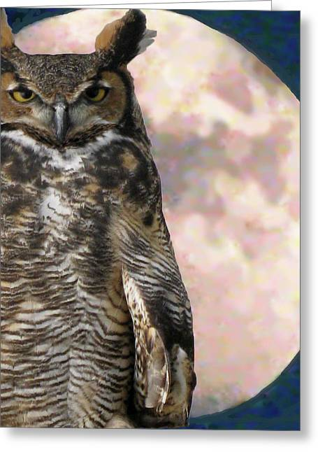 Different Owl Greeting Cards - Whos Watching Greeting Card by Debra     Vatalaro