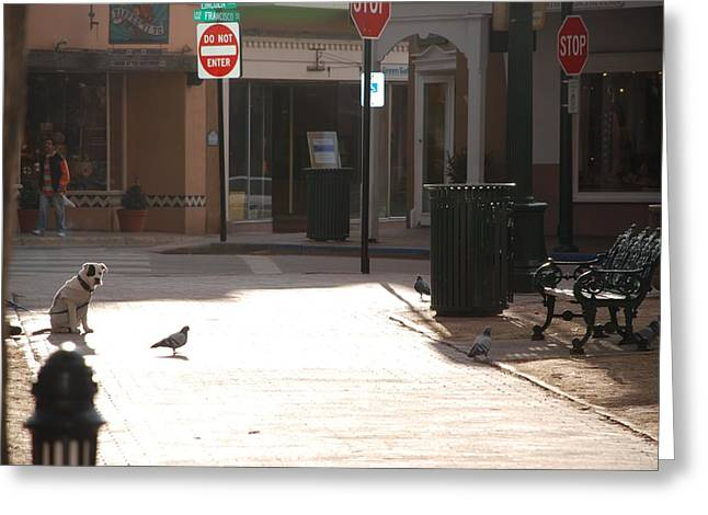 Town Square Greeting Cards - Why Question Mark Greeting Card by Rob Hans