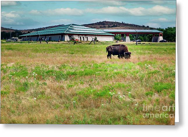 Wichita Mountain Wildlife Reserve Welcome Center II Greeting Card by Tamyra Ayles