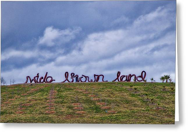 Wide Brown Land - Canberra - Australia Greeting Card by Steven Ralser
