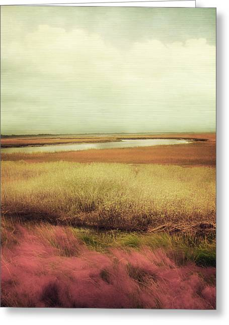 Landscape Art Greeting Cards - Wide Open Spaces Greeting Card by Amy Tyler