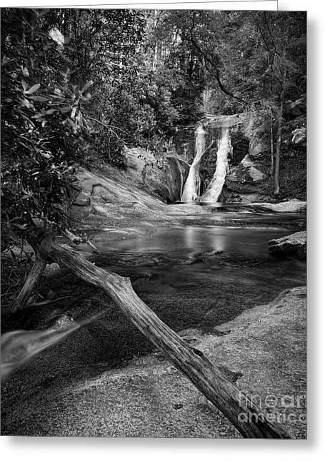 Nc State Greeting Cards - Widows Creek Falls 1 BW Greeting Card by Patrick M Lynch