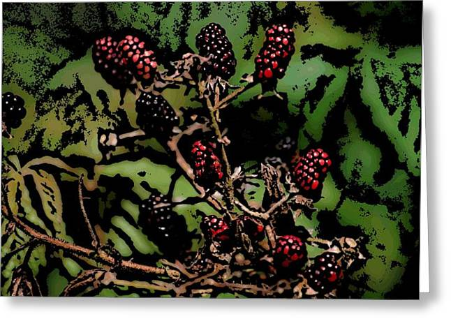 Wild Berries Greeting Card by David Lane