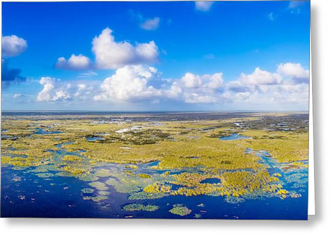 Wild Blue Yonder Greeting Card by Mark Andrew Thomas