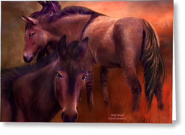 Wild Horses Mixed Media Greeting Cards - Wild Breed Greeting Card by Carol Cavalaris