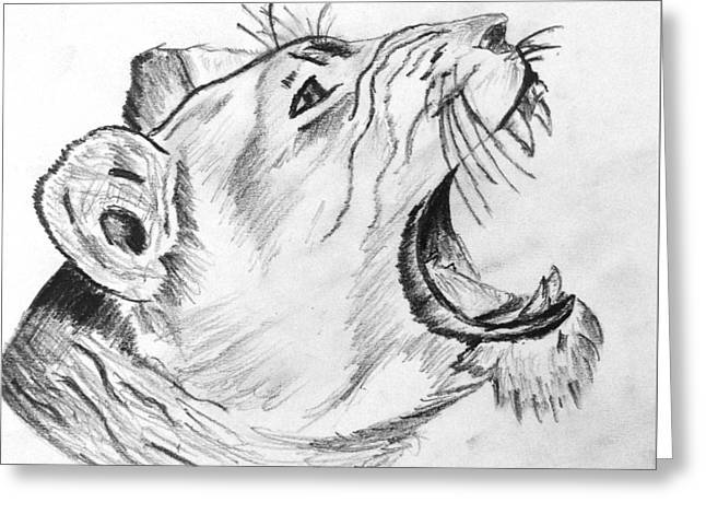 Wildcats Drawings Greeting Cards - Wild By Nature Greeting Card by Praveen Meena