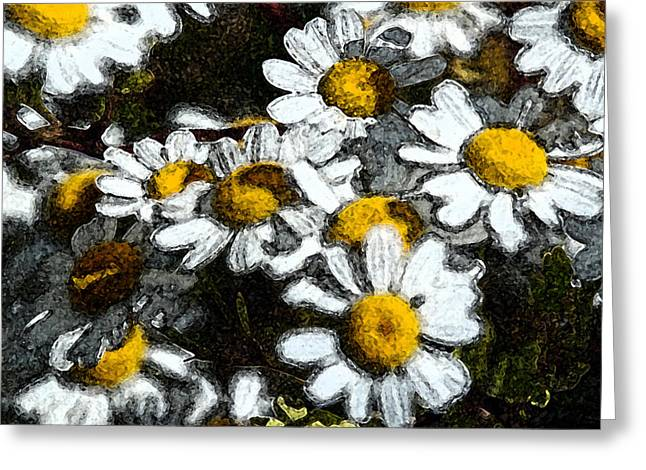 Dry Brush Greeting Cards - Wild Daisies Greeting Card by Carol  Eliassen