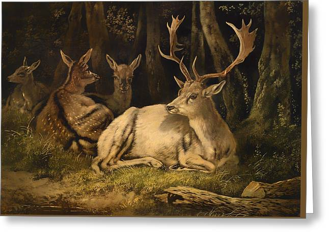 Nature Greeting Cards - Wild Deer Greeting Card by August Schleich