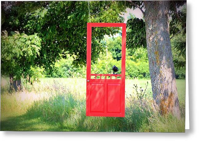 Screen Doors Greeting Cards - Wild Door Greeting Card by Suzann Hallman