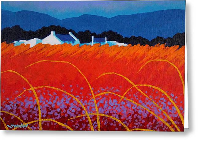 Landscape Posters Greeting Cards - Wild Flowers County Wicklow Greeting Card by John  Nolan