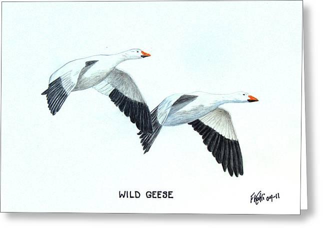 Wild Geese Greeting Card by Frederic Kohli