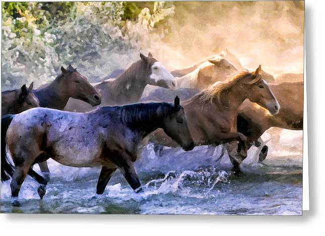 Wild Herd Greeting Card by Janet Fikar