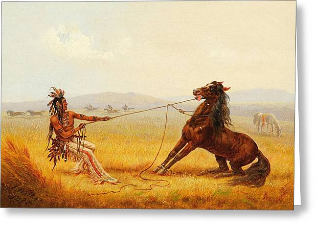 Wild Horse Catchers Greeting Card by Celestial Images
