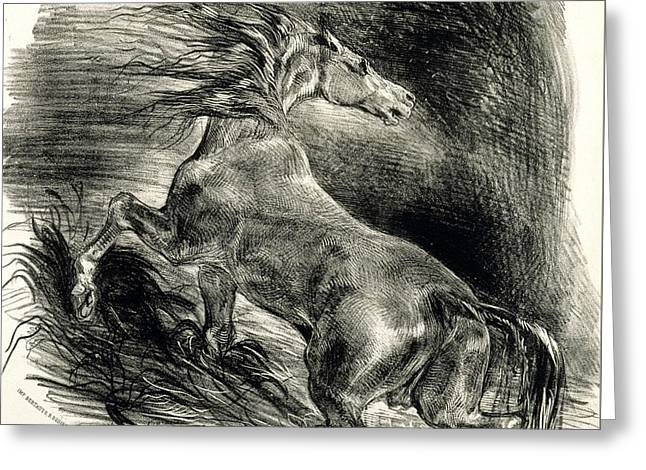 Wild Horse Greeting Card by Eugene Delacroix